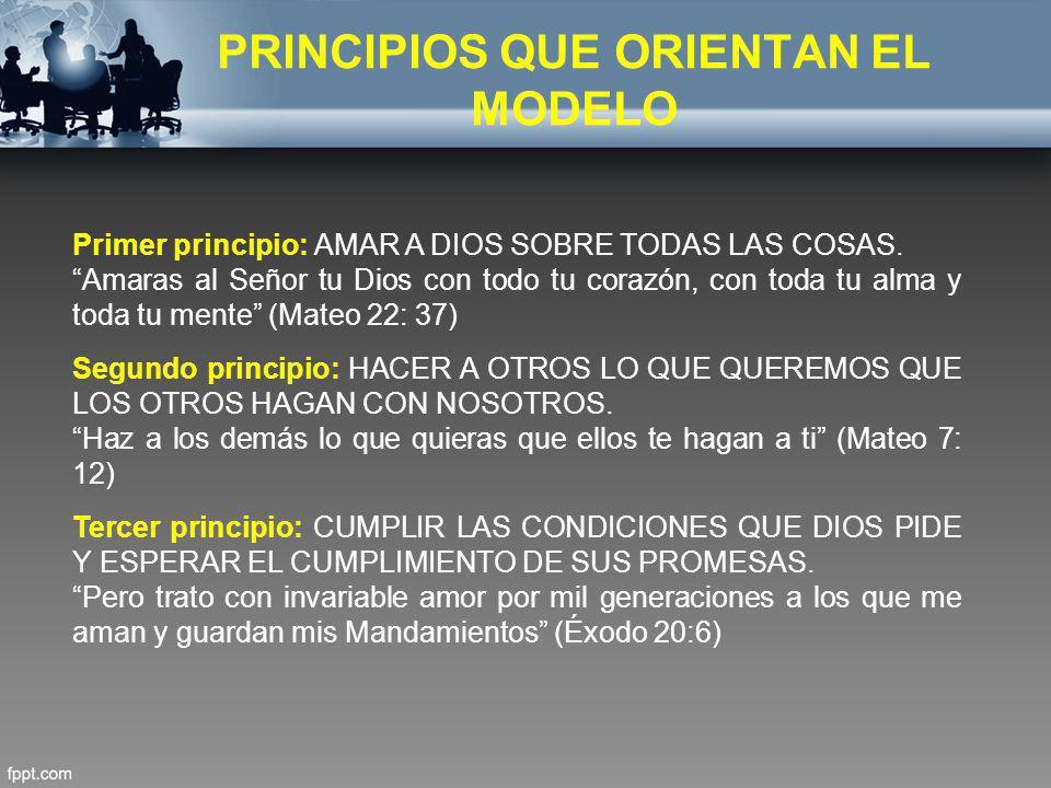 PRINCIPIOS QUE ORIENTAN EL MODELO