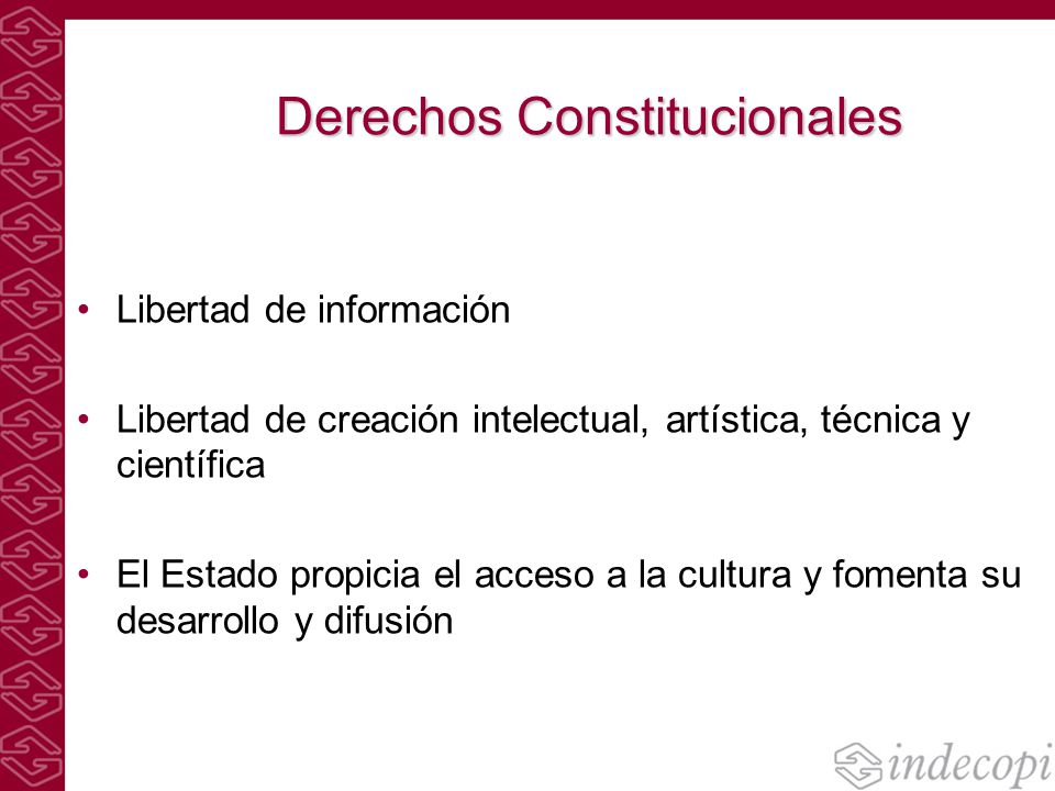 Derechos Constitucionales