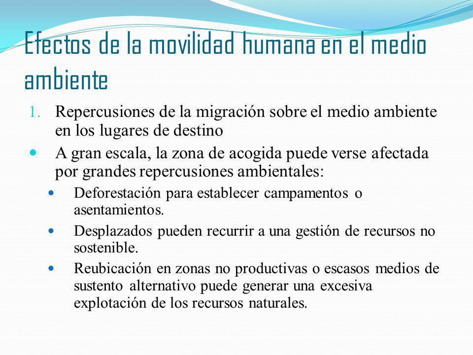 Efectos de la movilidad humana en el medio ambiente