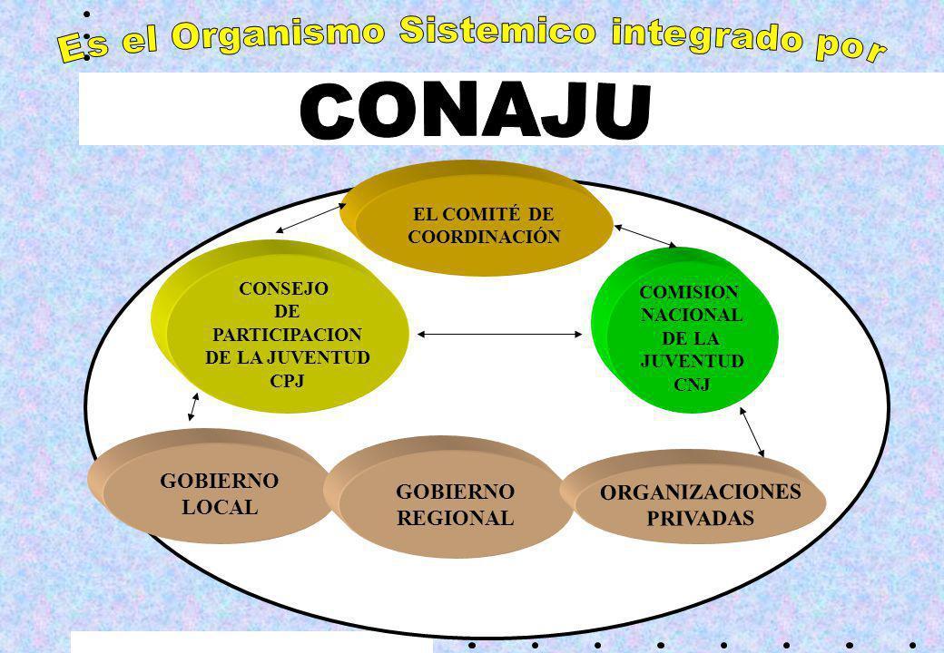 Es el Organismo Sistemico integrado por