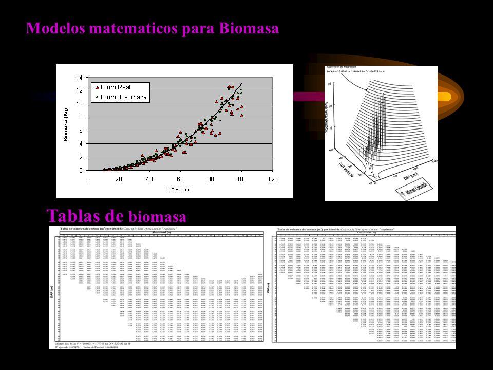 Modelos matematicos para Biomasa