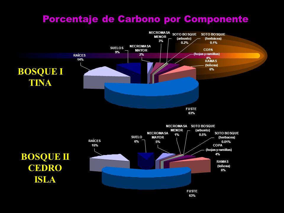 Porcentaje de Carbono por Componente