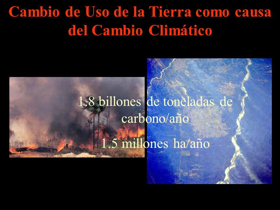 Cambio de Uso de la Tierra como causa del Cambio Climático