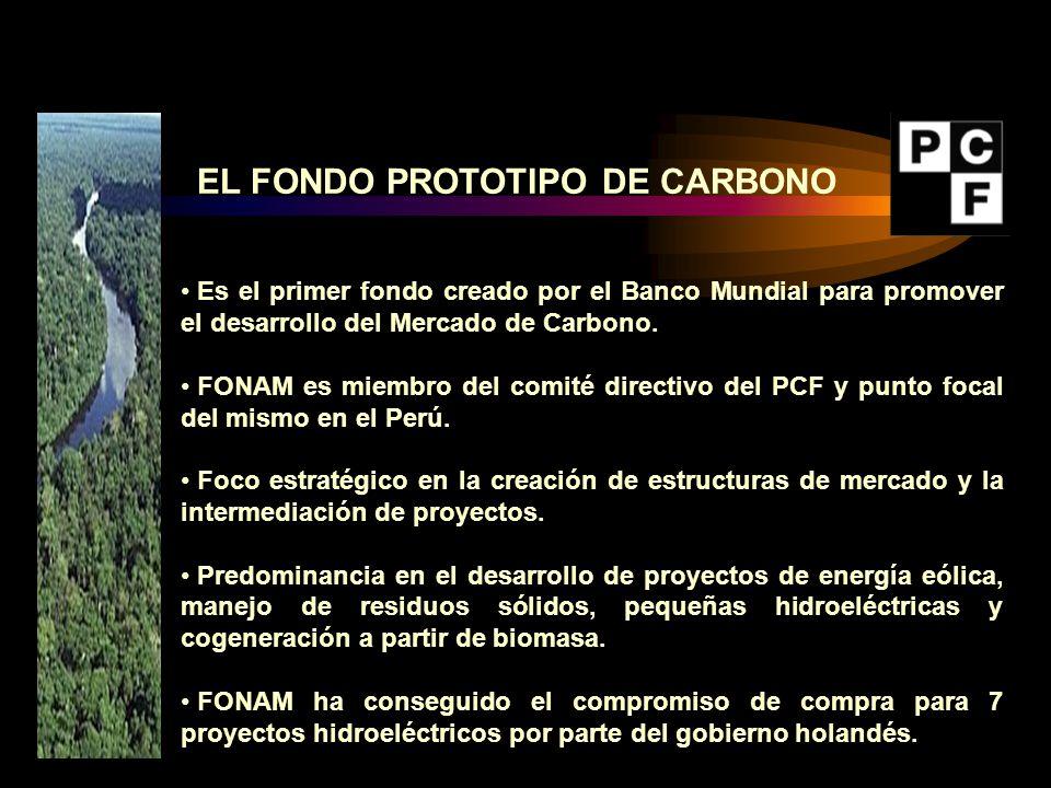 EL FONDO PROTOTIPO DE CARBONO
