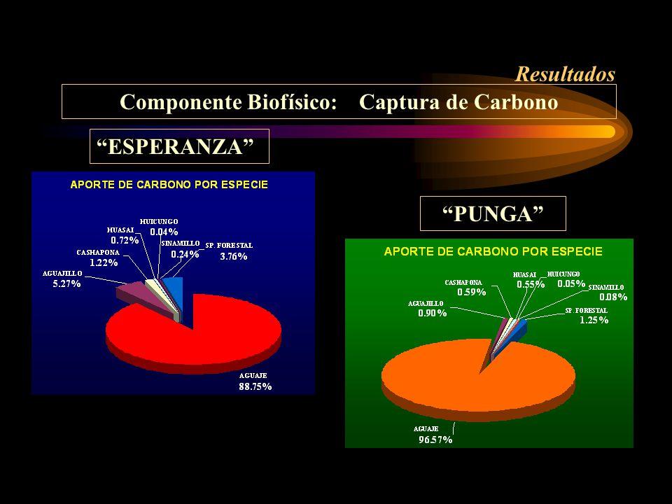 Componente Biofísico: Captura de Carbono