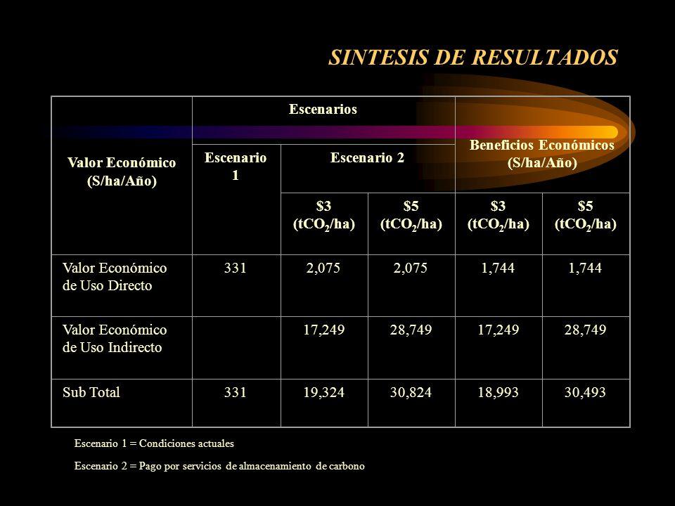 SINTESIS DE RESULTADOS
