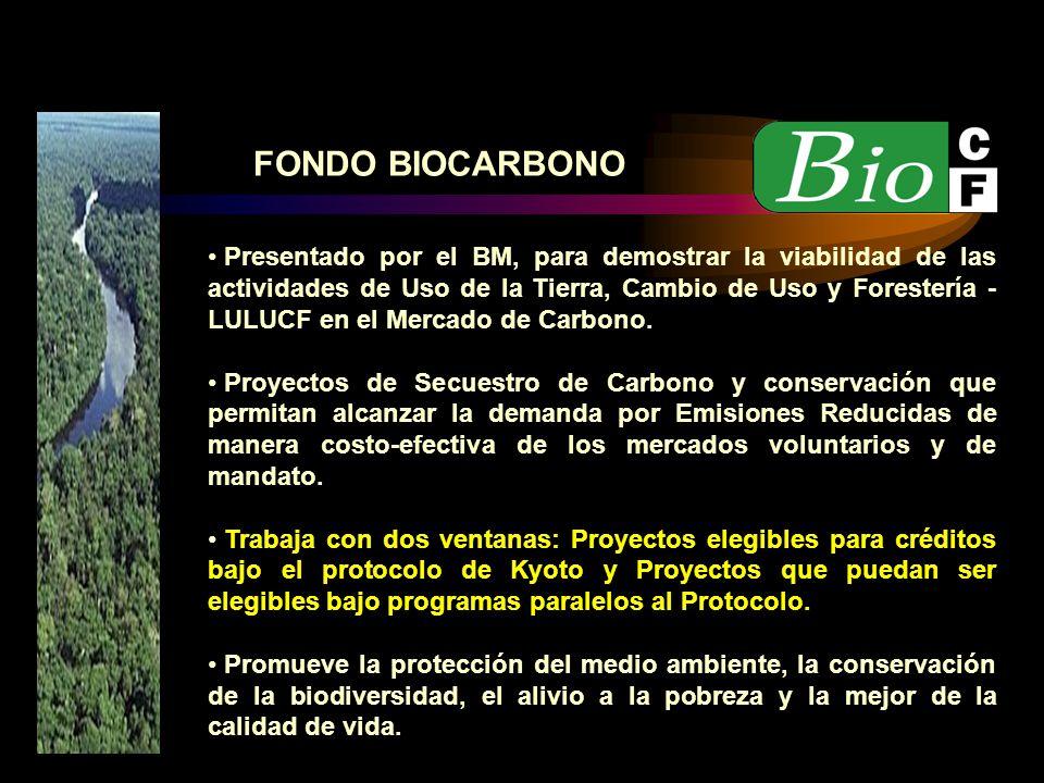 FONDO BIOCARBONO