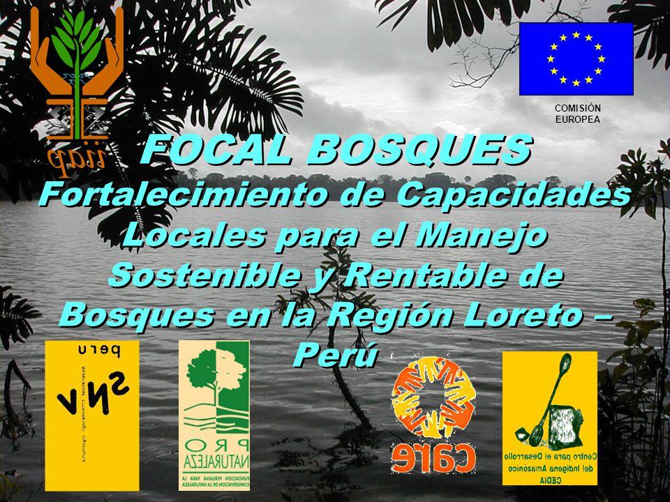 COMISIÓN EUROPEA FOCAL BOSQUES Fortalecimiento de Capacidades Locales para el Manejo Sostenible y Rentable de Bosques en la Región Loreto – Perú.
