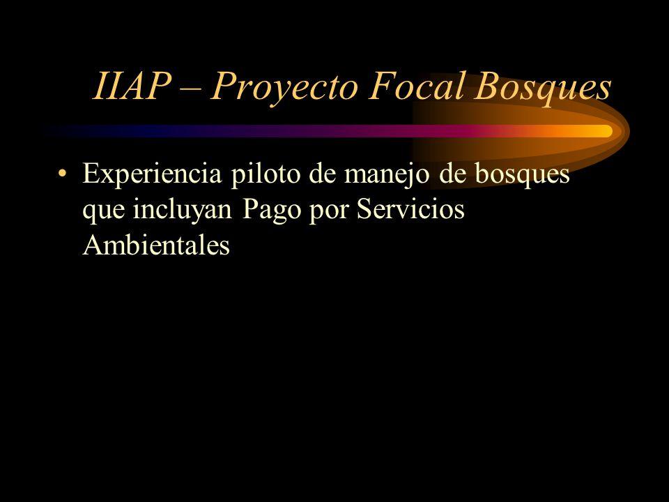 IIAP – Proyecto Focal Bosques