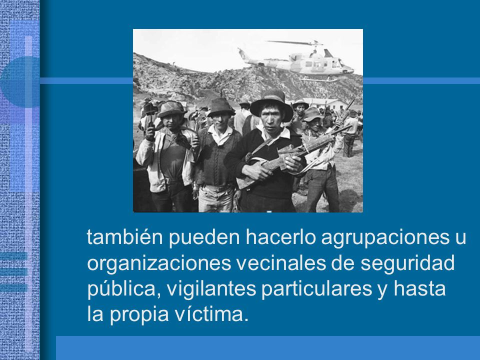 también pueden hacerlo agrupaciones u organizaciones vecinales de seguridad pública, vigilantes particulares y hasta la propia víctima.