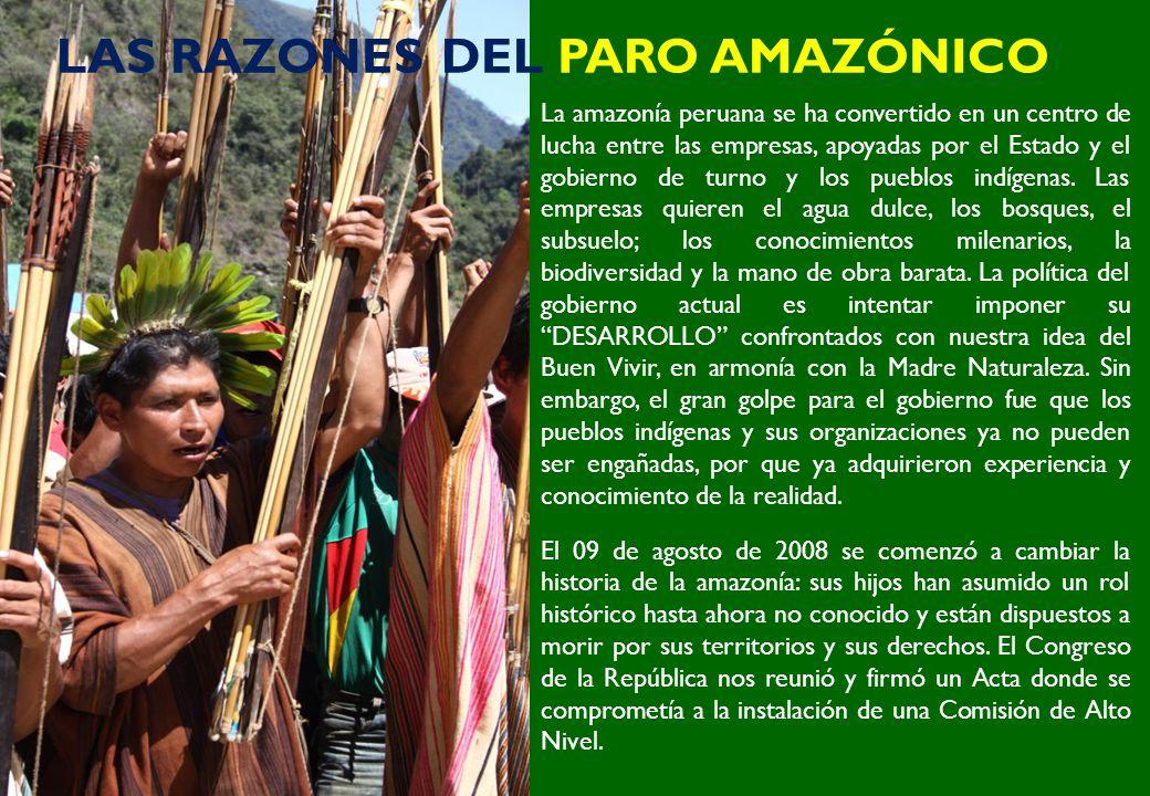 LAS RAZONES DEL PARO AMAZÓNICO