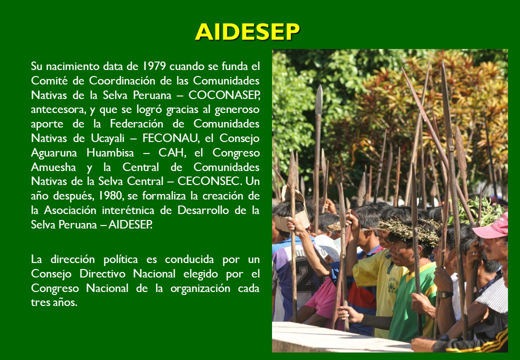 AIDESEP