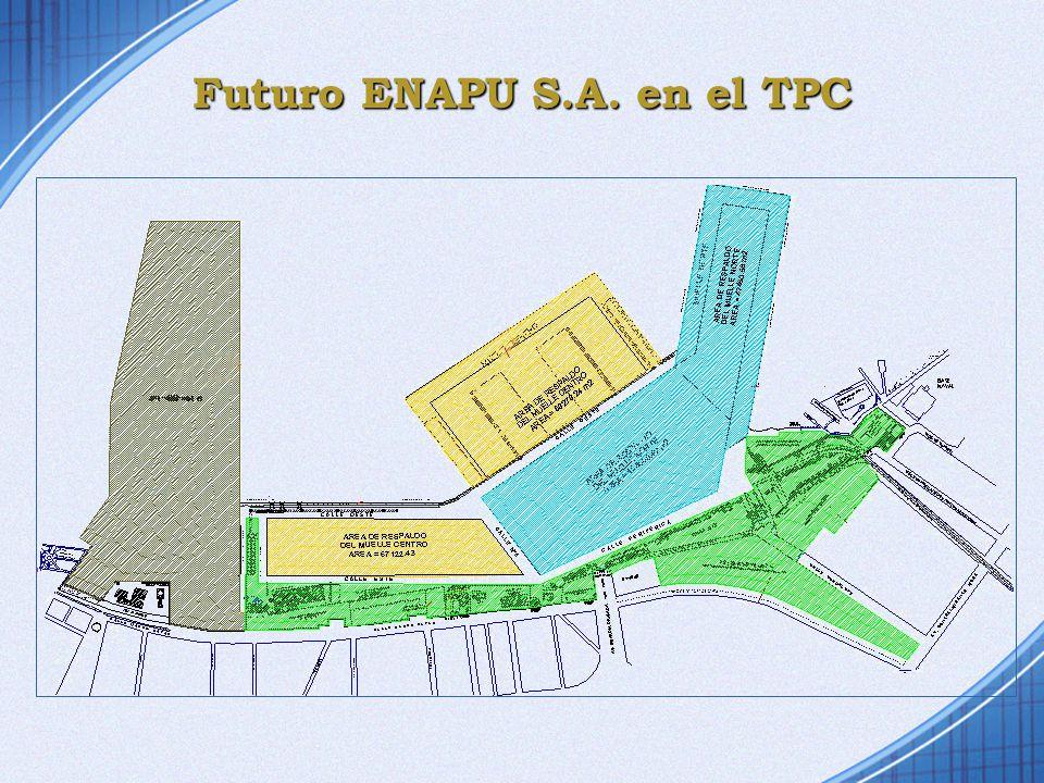 Futuro ENAPU S.A. en el TPC