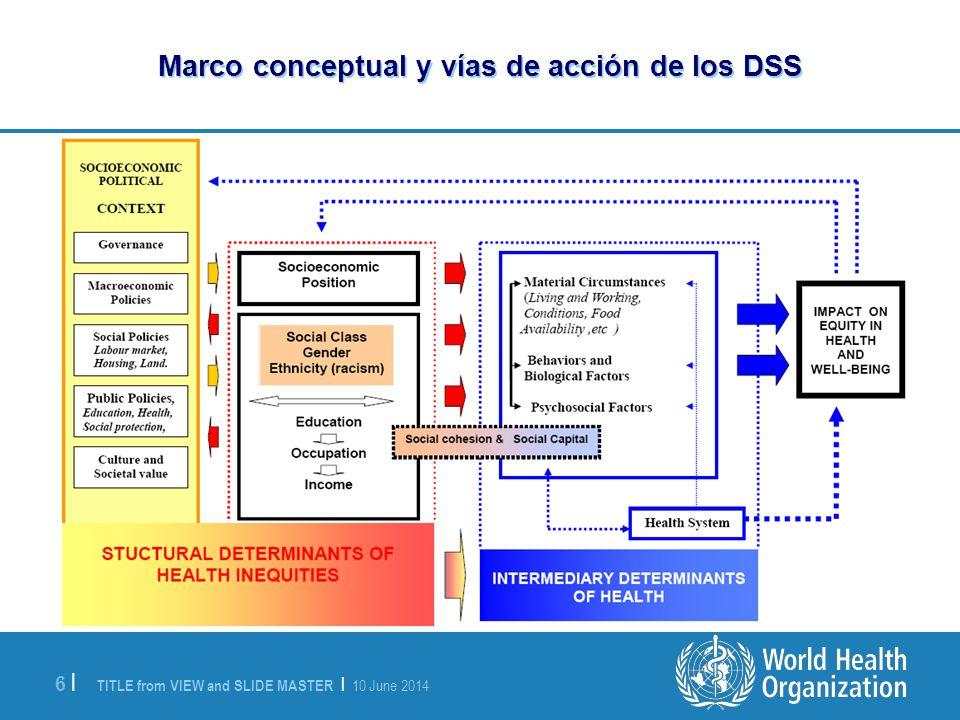 Marco conceptual y vías de acción de los DSS