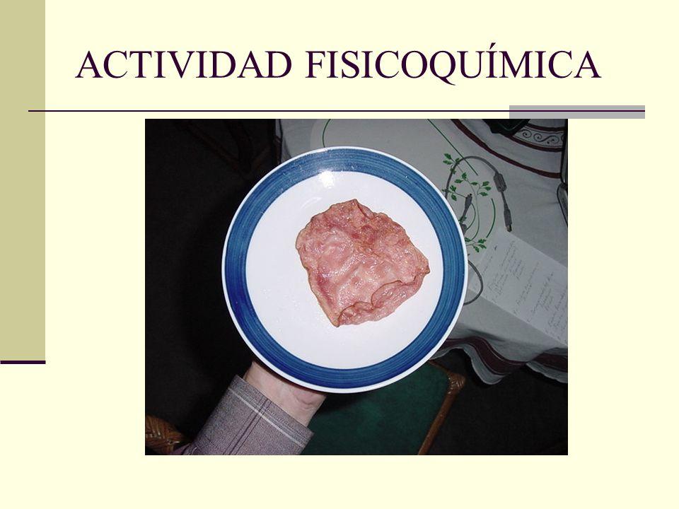 ACTIVIDAD FISICOQUÍMICA