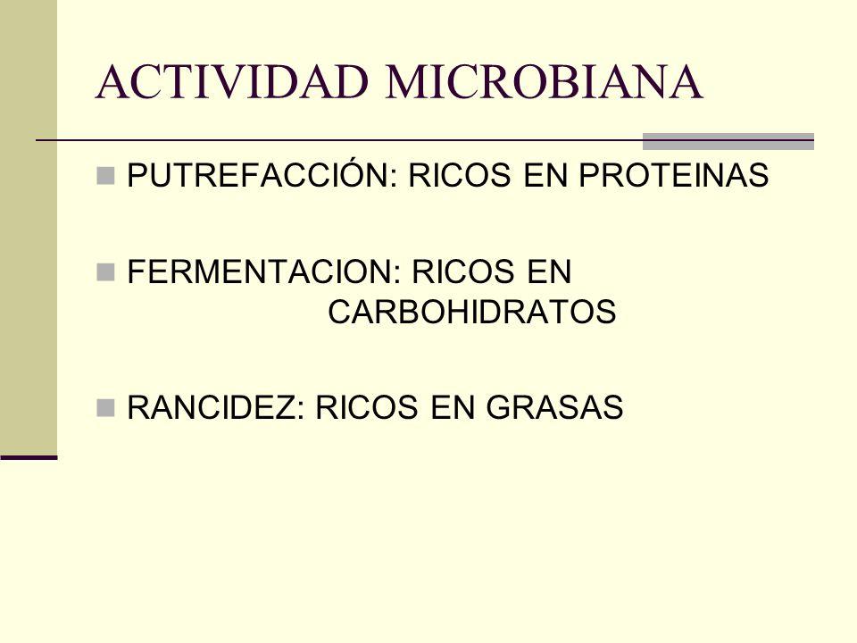 ACTIVIDAD MICROBIANA PUTREFACCIÓN: RICOS EN PROTEINAS