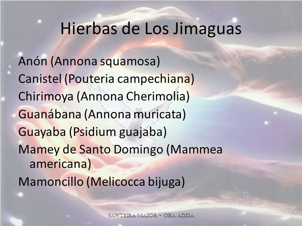 Hierbas de Los Jimaguas