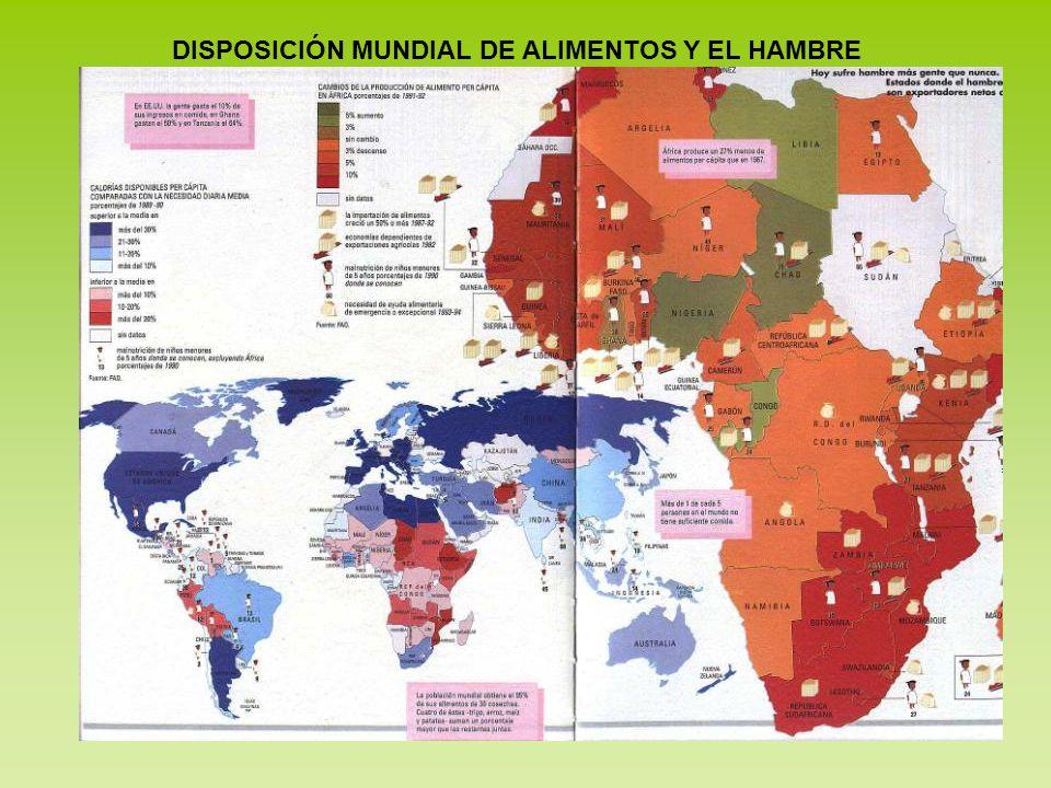 DISPOSICIÓN MUNDIAL DE ALIMENTOS Y EL HAMBRE