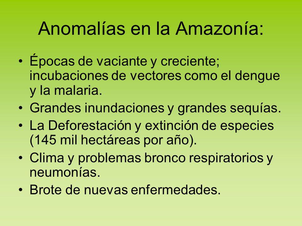Anomalías en la Amazonía:
