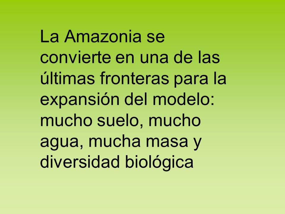 La Amazonia se convierte en una de las últimas fronteras para la expansión del modelo: mucho suelo, mucho agua, mucha masa y diversidad biológica