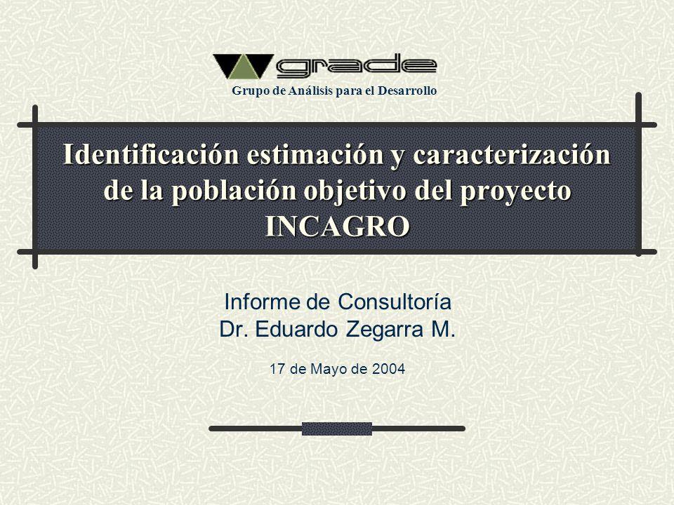 Informe de Consultoría Dr. Eduardo Zegarra M. 17 de Mayo de 2004