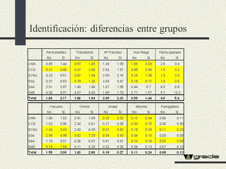 Identificación: diferencias entre grupos