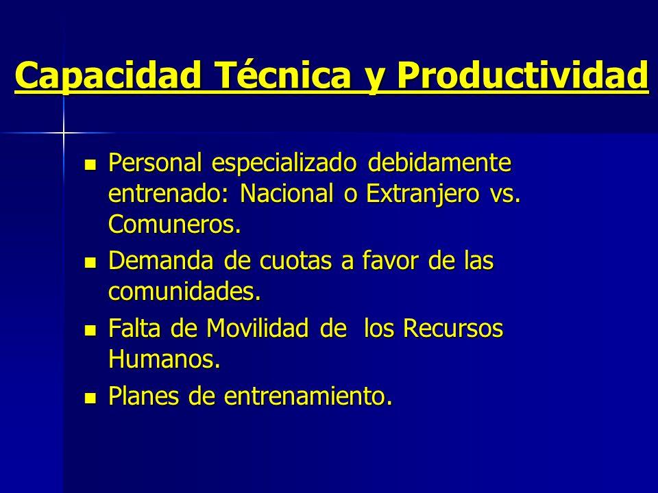 Capacidad Técnica y Productividad