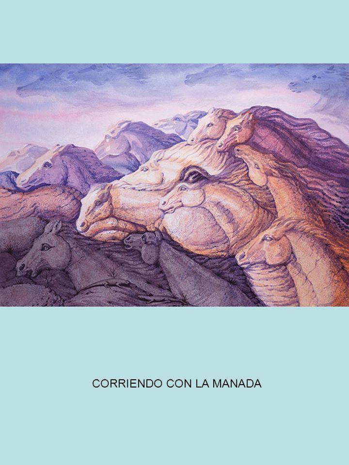 CORRIENDO CON LA MANADA
