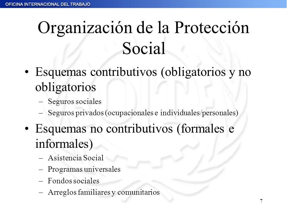 Organización de la Protección Social