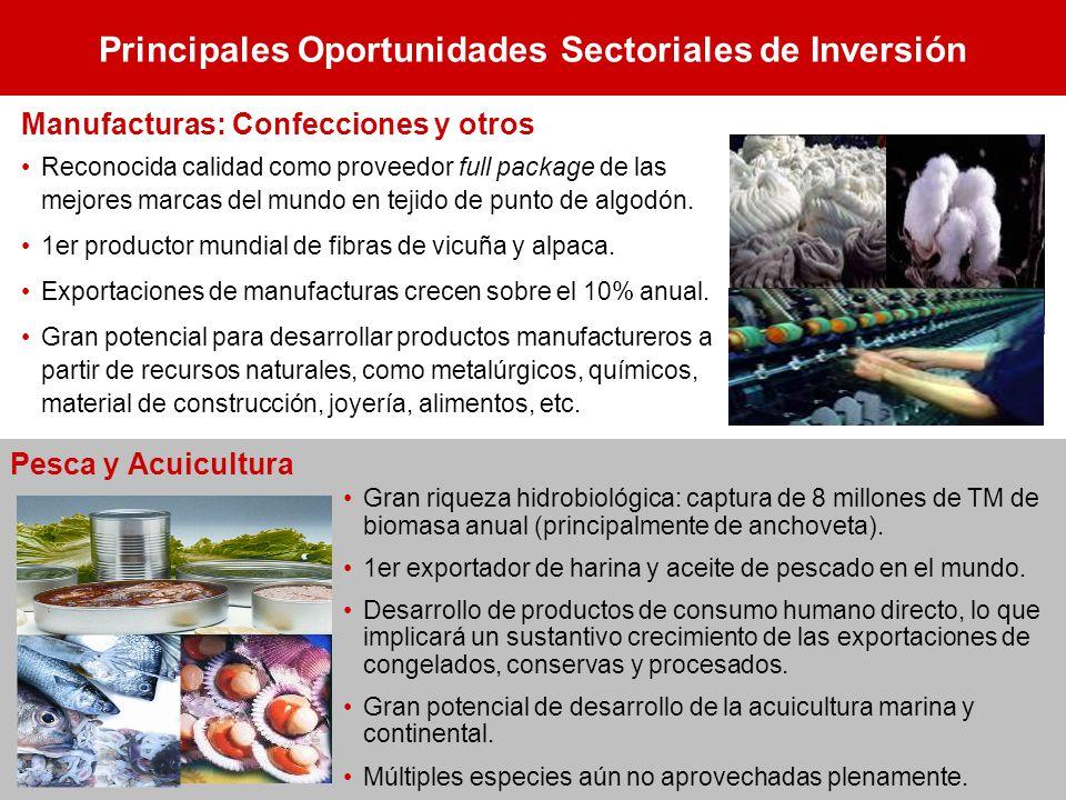 Principales Oportunidades Sectoriales de Inversión