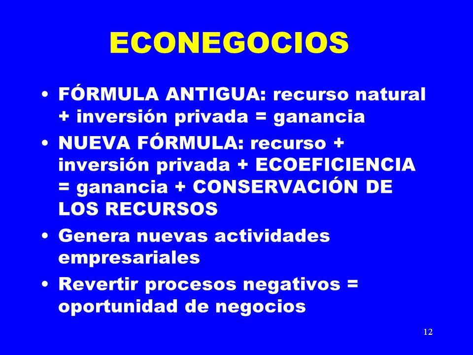 ECONEGOCIOS FÓRMULA ANTIGUA: recurso natural + inversión privada = ganancia.