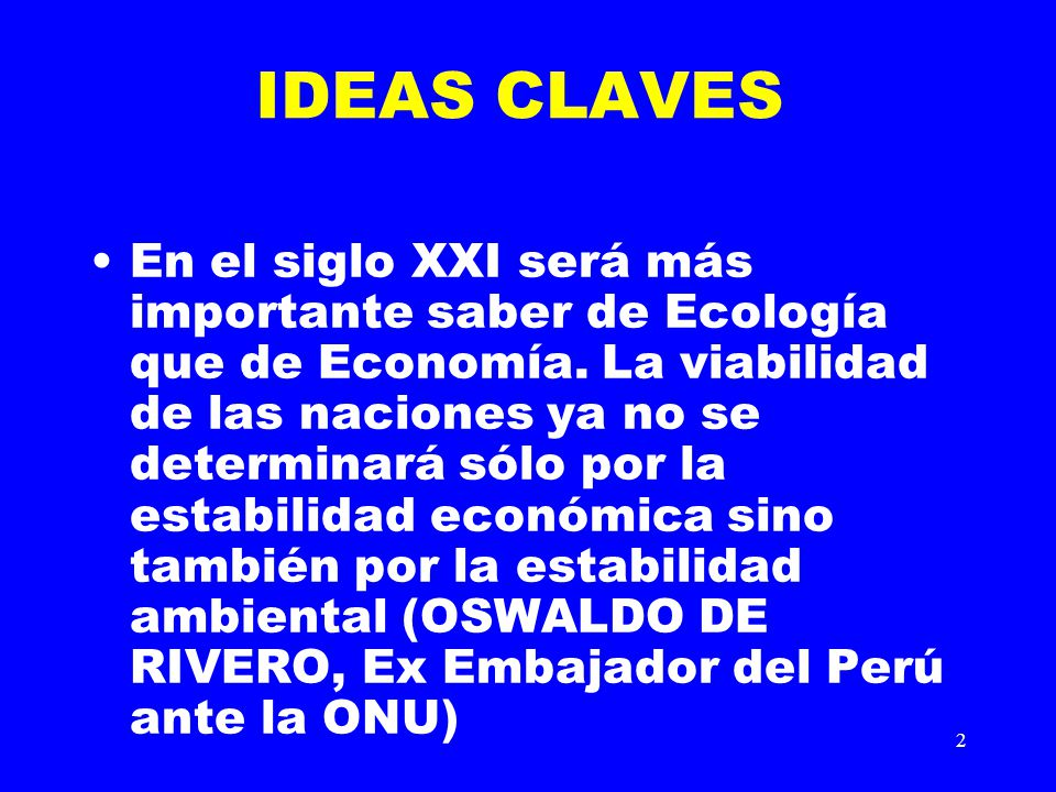 IDEAS CLAVES