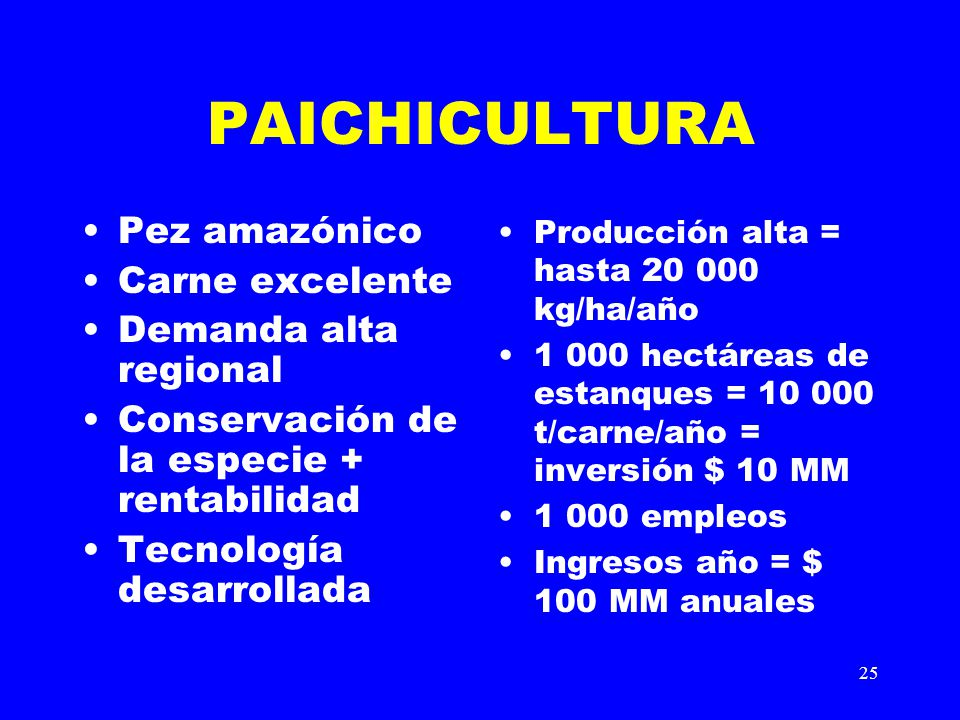 PAICHICULTURA Pez amazónico Carne excelente Demanda alta regional