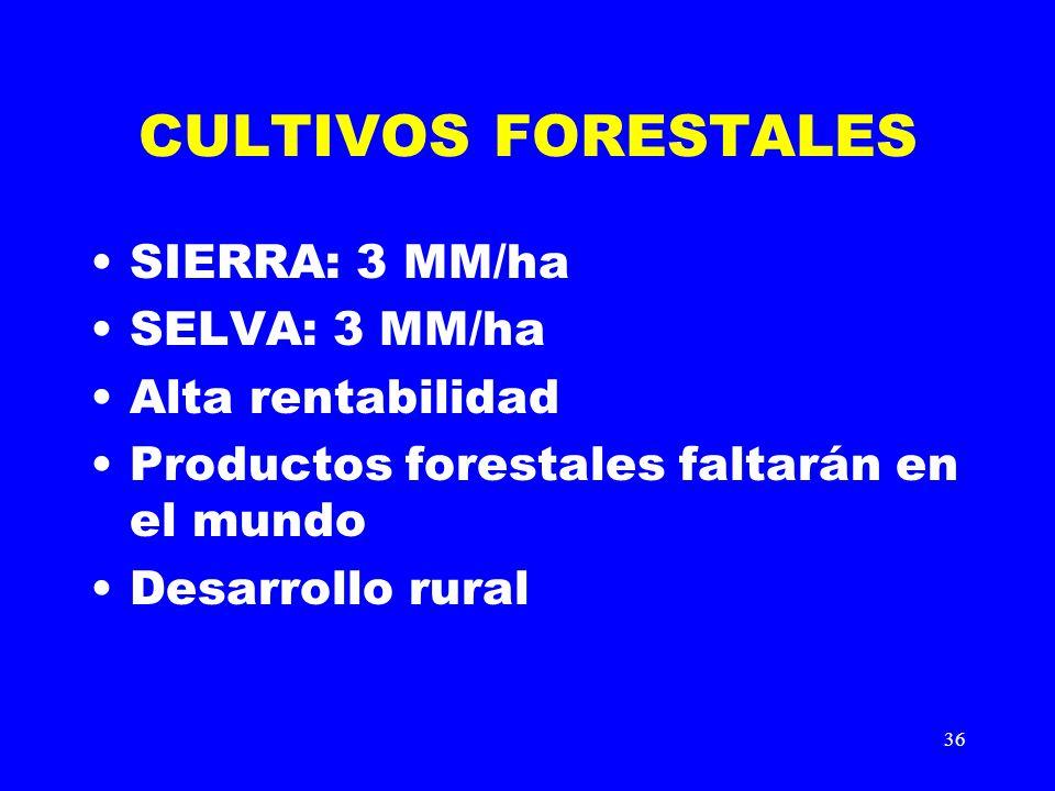 CULTIVOS FORESTALES SIERRA: 3 MM/ha SELVA: 3 MM/ha Alta rentabilidad