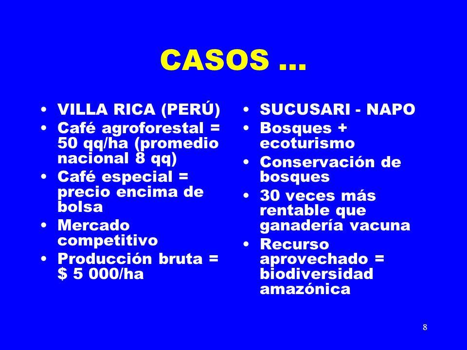 CASOS ... VILLA RICA (PERÚ)