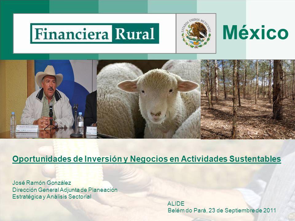 México Oportunidades de Inversión y Negocios en Actividades Sustentables. José Ramón González. Dirección General Adjunta de Planeación.