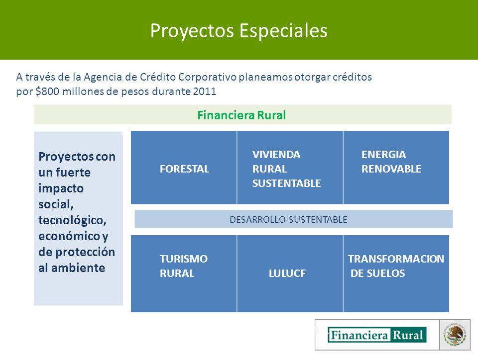 Proyectos Especiales A través de la Agencia de Crédito Corporativo planeamos otorgar créditos. por $800 millones de pesos durante 2011.