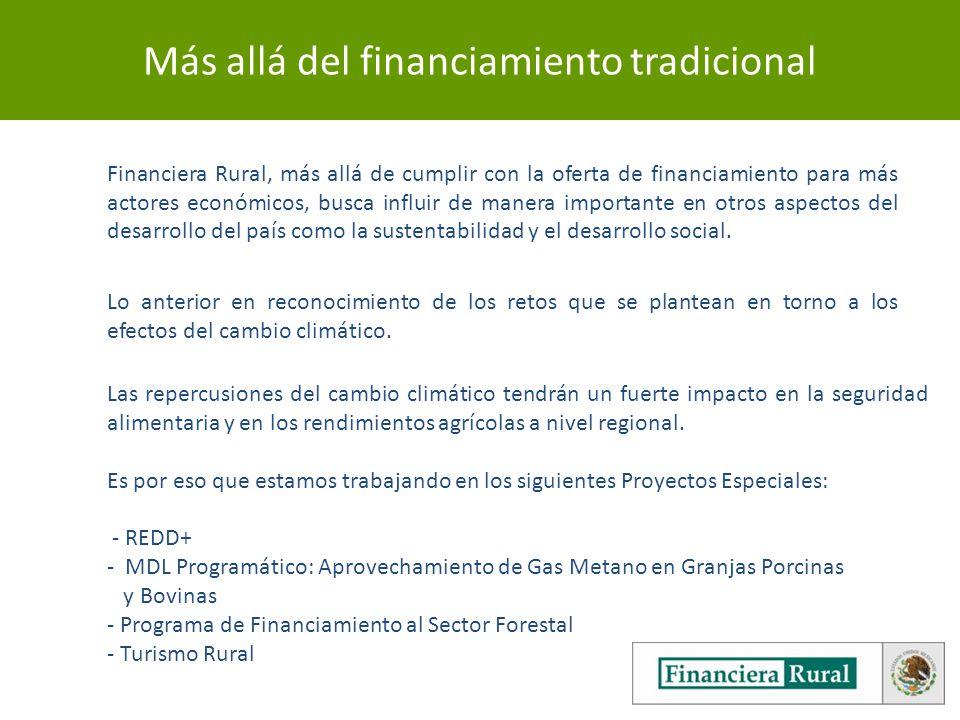 Más allá del financiamiento tradicional