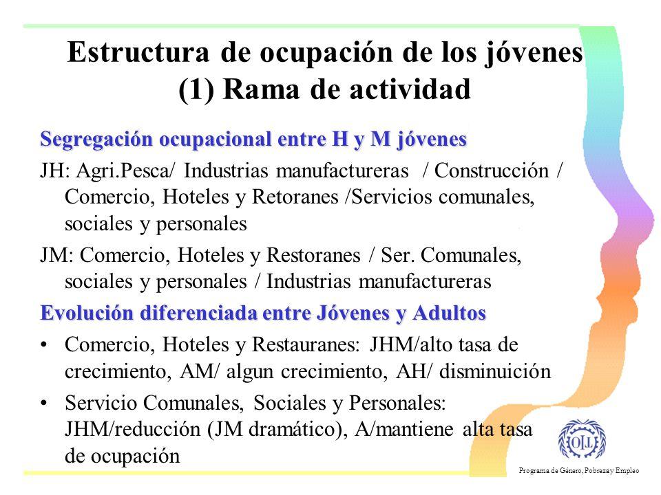 Estructura de ocupación de los jóvenes (1) Rama de actividad