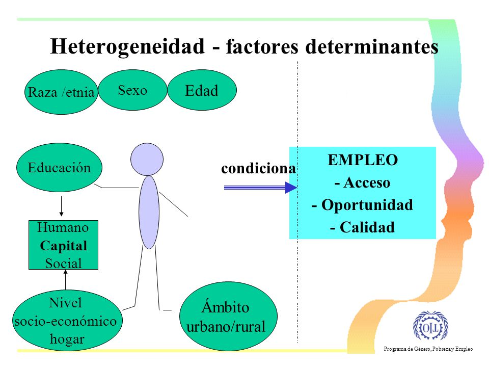 Heterogeneidad - factores determinantes