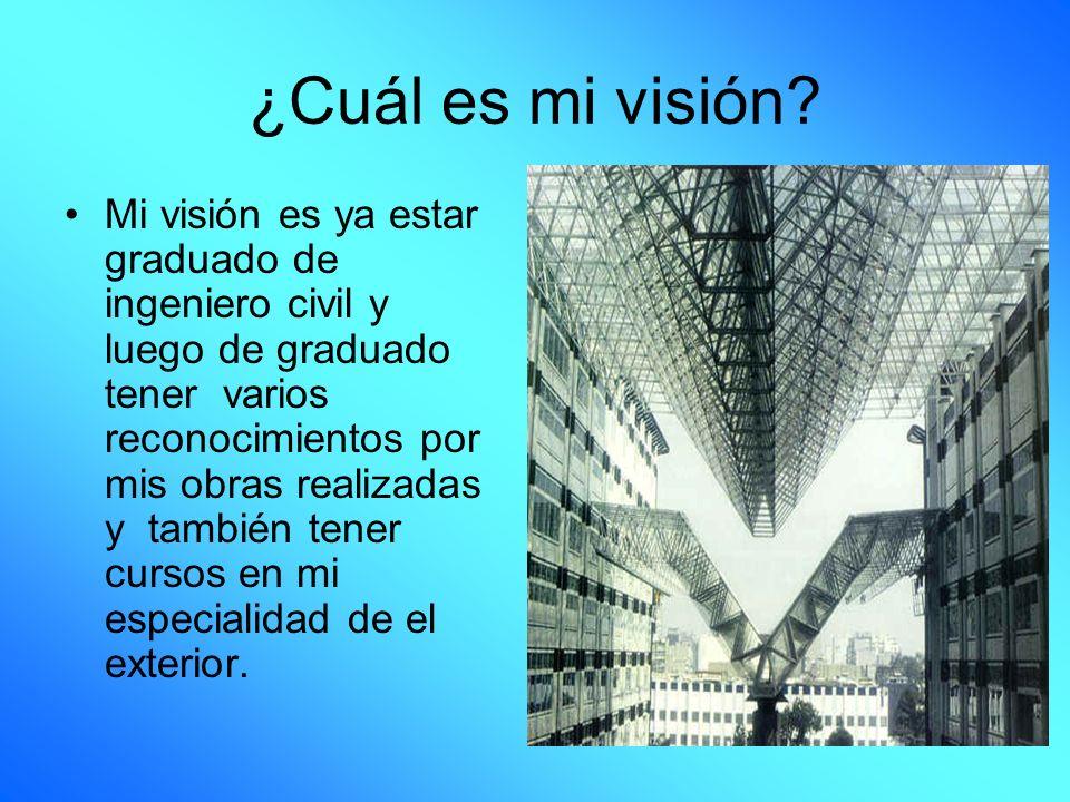 ¿Cuál es mi visión
