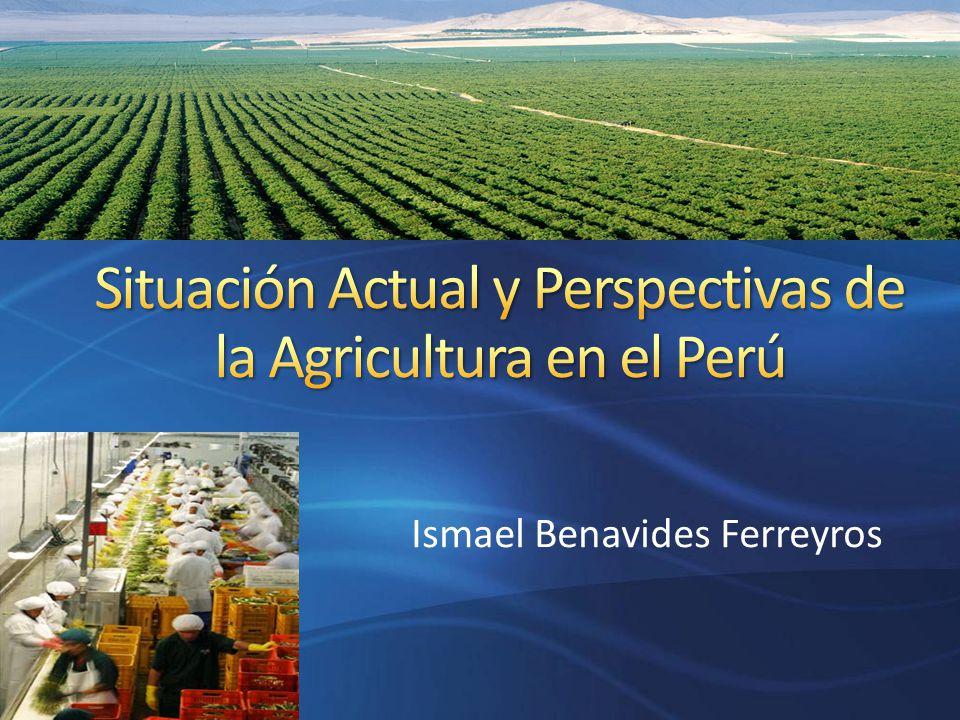 Situación Actual y Perspectivas de la Agricultura en el Perú