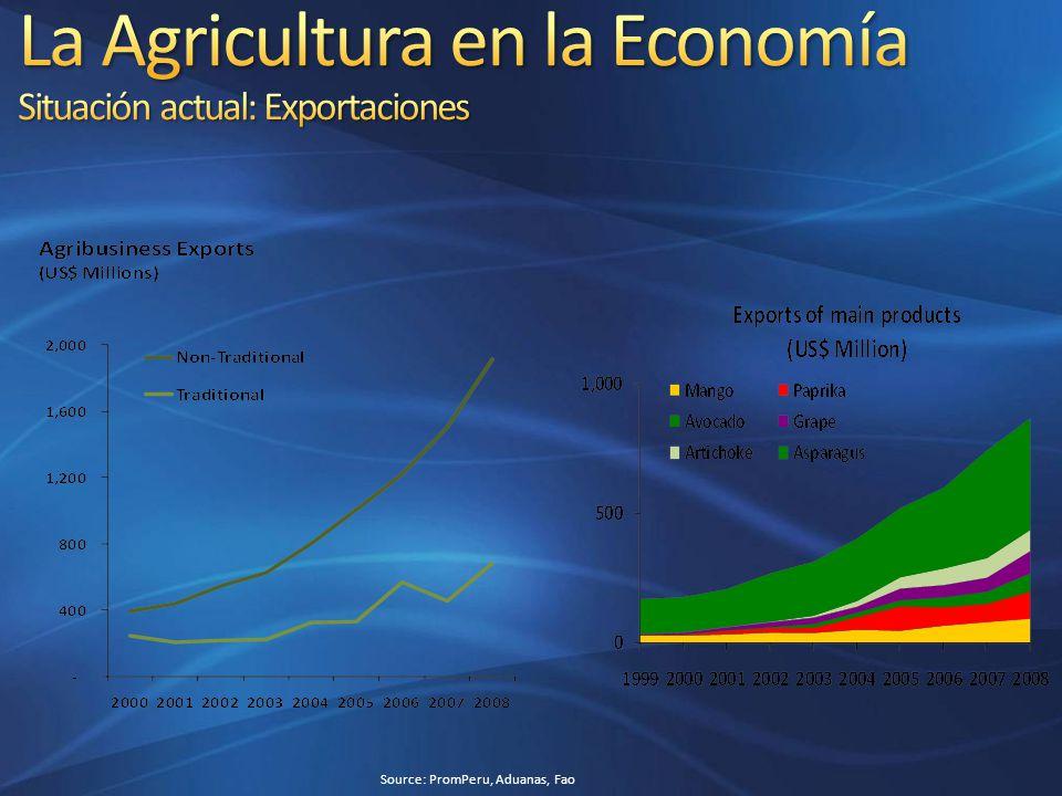 La Agricultura en la Economía Situación actual: Exportaciones