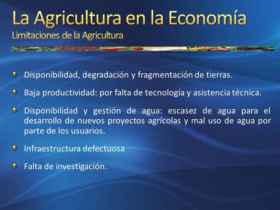 La Agricultura en la Economía Limitaciones de la Agricultura