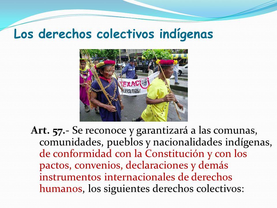 Los derechos colectivos indígenas