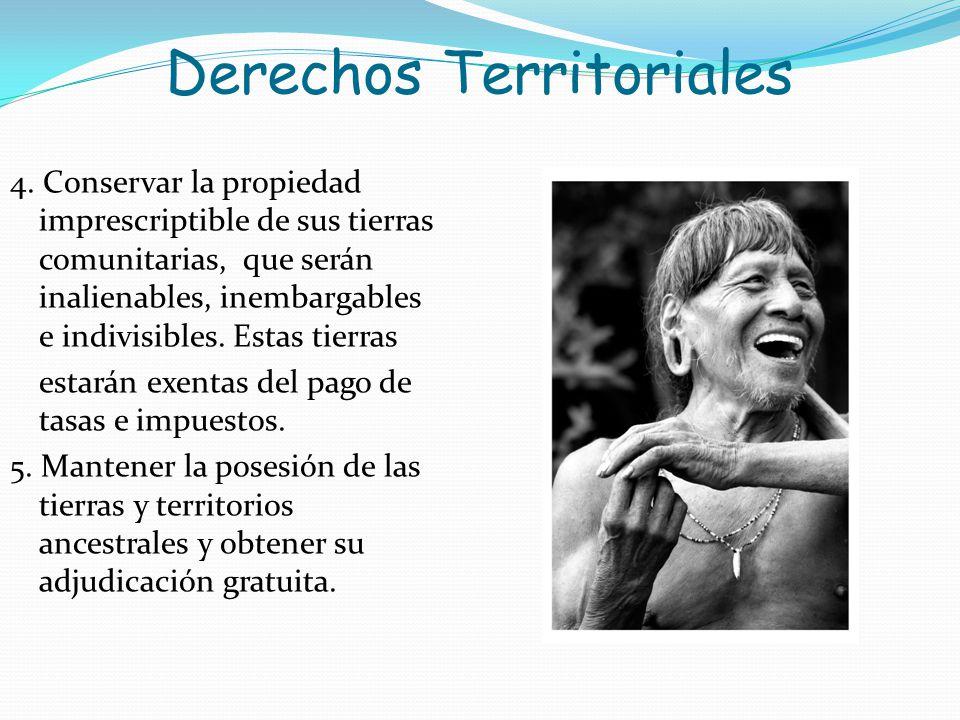Derechos Territoriales