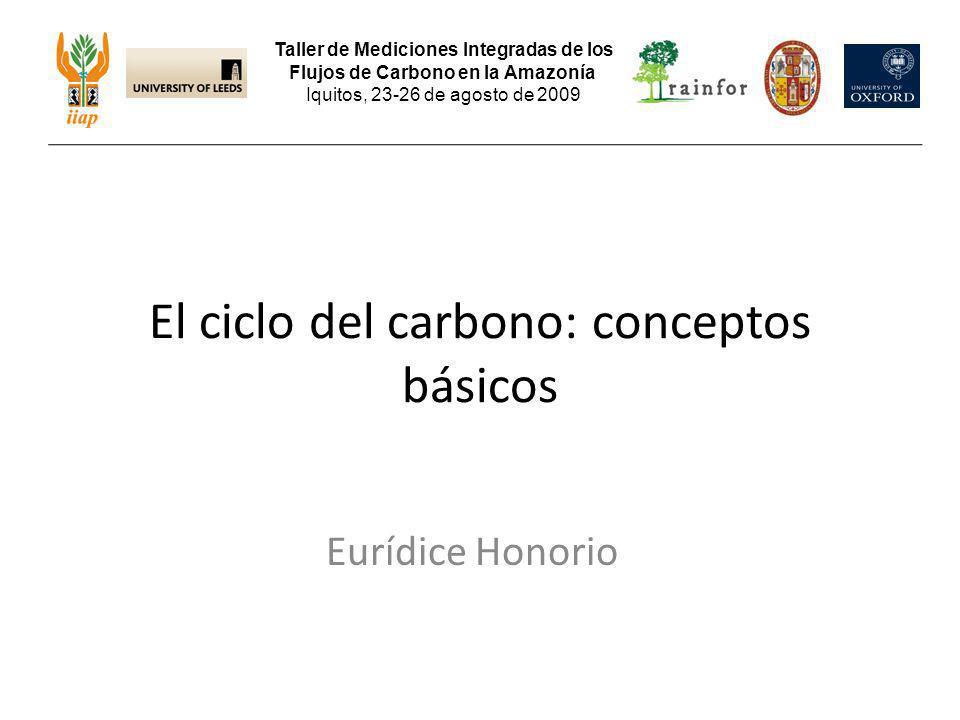 El ciclo del carbono: conceptos básicos