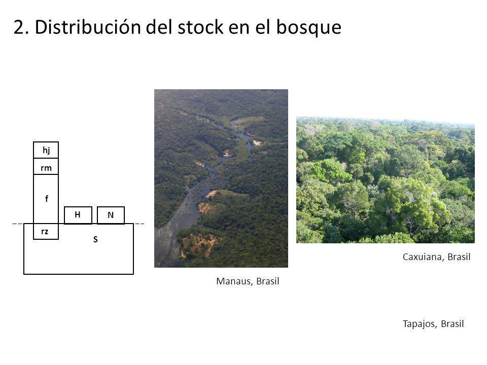 2. Distribución del stock en el bosque