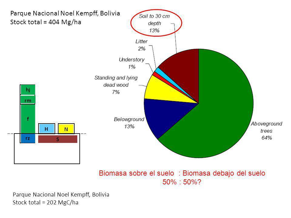 Biomasa sobre el suelo : Biomasa debajo del suelo