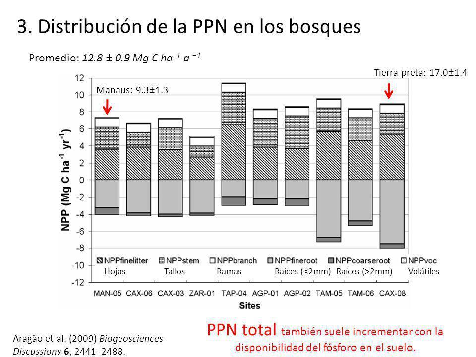 3. Distribución de la PPN en los bosques